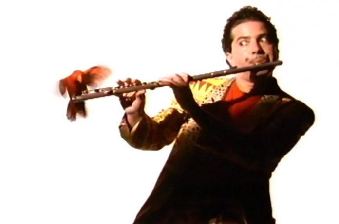 Paul Shapiro flute whistle song