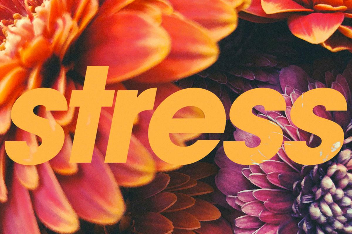 Tycho Stress No Stress Instrumental