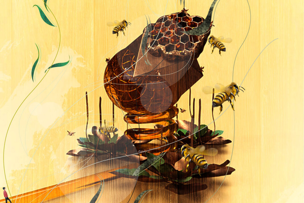 Candace Bellamy Like Honey album art