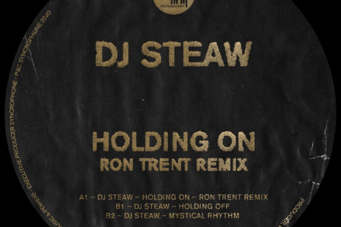 DJ Steaw Holding On Ron Trent Remix album art